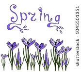 floral border of crocuses... | Shutterstock .eps vector #1045501351