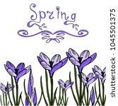 violet crocuses spring... | Shutterstock .eps vector #1045501375