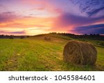 beautiful meadow with bales of... | Shutterstock . vector #1045584601