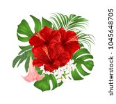 bouquet with tropical flowers ... | Shutterstock .eps vector #1045648705