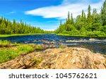 Forest River Summer Landscape
