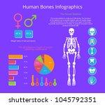 human bones infographics... | Shutterstock .eps vector #1045792351