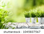 table background and spring... | Shutterstock . vector #1045837567