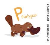 animal alphabet   p for... | Shutterstock .eps vector #1045888915