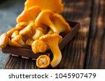 raw wild mushrooms...   Shutterstock . vector #1045907479