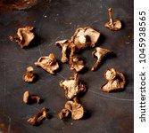 arrangement of dried forest...   Shutterstock . vector #1045938565