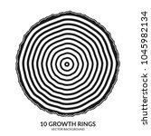 10 growth rings. tree rings and ... | Shutterstock .eps vector #1045982134