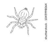 hand drawn doodle sketch line... | Shutterstock .eps vector #1045998064