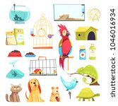 Stock vector pet shop set with domestic animals dry feed medicines cages and aquariums isolated vector 1046016934