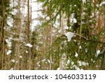 winter landscape with pine... | Shutterstock . vector #1046033119