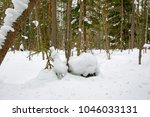 winter landscape with pine... | Shutterstock . vector #1046033131