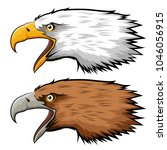 mascot head of eagle isolated... | Shutterstock .eps vector #1046056915