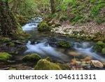 bigar river in beusnita gorges... | Shutterstock . vector #1046111311