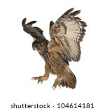 Stock photo eurasian eagle owl bubo bubo years old flying against white background 104614181