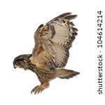 Stock photo eurasian eagle owl bubo bubo years old flying against white background 104614214