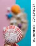 seashell decoration collection | Shutterstock . vector #1046246287
