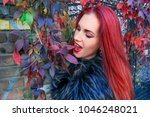young red head gothic woman... | Shutterstock . vector #1046248021