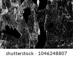 abstract background. monochrome ... | Shutterstock . vector #1046248807