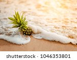 pineapple on the beach.tropical ... | Shutterstock . vector #1046353801