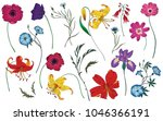 wildflowers and herbs set.... | Shutterstock .eps vector #1046366191