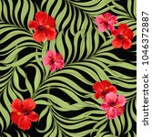 seamless hand drawn exotic... | Shutterstock .eps vector #1046372887