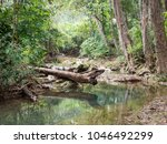 green pond in tropical rain... | Shutterstock . vector #1046492299