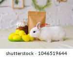 white bunny sitting near... | Shutterstock . vector #1046519644