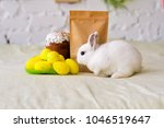 white rabbit sits near kraft... | Shutterstock . vector #1046519647