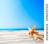 shell on beach and landscape of ... | Shutterstock . vector #1046525101