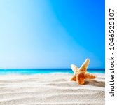 shell on beach and landscape of ... | Shutterstock . vector #1046525107