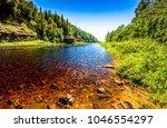 Summer Green Forest River Side...