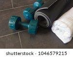 black yoga mat  two dumbbells... | Shutterstock . vector #1046579215