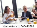 group of business people having ... | Shutterstock . vector #1046643781