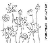 vector contour lotus lily... | Shutterstock .eps vector #1046695135