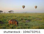 a morning of the serengeti. we... | Shutterstock . vector #1046732911