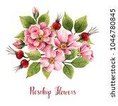rosehip flowers  watercolor...   Shutterstock . vector #1046780845