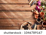 Garden season opening concept with flowers, plant pots, soil and different tools for flower cultivation to the side over wooden board floor with copy space - stock photo