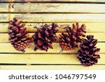 Four Pine Cones On Bamboo...