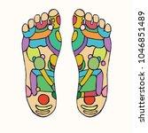 foot reflexology scheme with...   Shutterstock .eps vector #1046851489