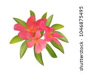 red pink tropical flowers and... | Shutterstock .eps vector #1046875495