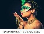 upscale indian woman wearing... | Shutterstock . vector #1047024187