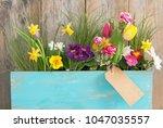 assorted spring flowers inside... | Shutterstock . vector #1047035557