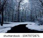 ice and snow covered trees in... | Shutterstock . vector #1047072871