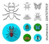 wrecker  parasite  nature ... | Shutterstock .eps vector #1047075919