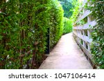 cement walkway with a tree wall ... | Shutterstock . vector #1047106414