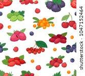 berry vector berrying mix of...   Shutterstock .eps vector #1047152464