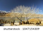 panoramic landscape scenic view ... | Shutterstock . vector #1047154309