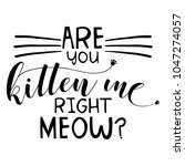 Stock vector are you kitten me right meow funny saying in isoltated vector eps on white background 1047274057
