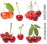 cherry collection | Shutterstock . vector #104727485
