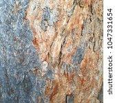 tree bark background in gray... | Shutterstock . vector #1047331654